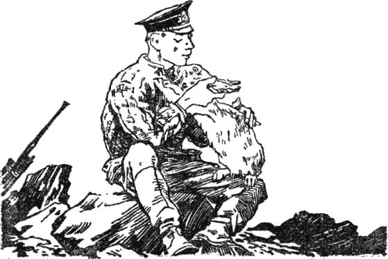 Батарейный заяц - Кассиль Лев, скачать книгу бесплатно в ... Каска Советская Png