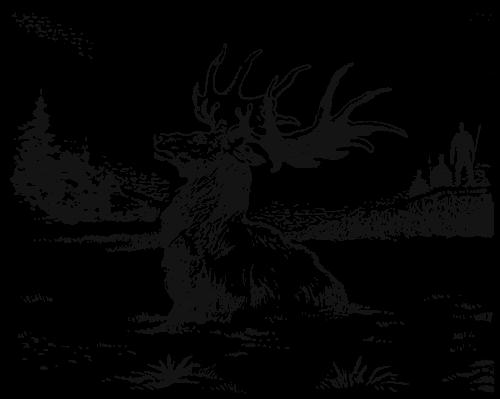 Старухи с звирями фото бисплатно фото 366-48